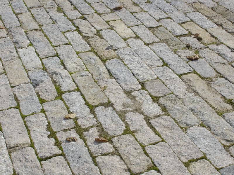 Purbeck stone cobble