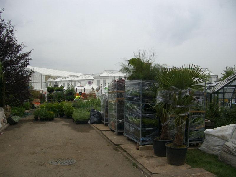 all-the-plants-have-arrived-safeley