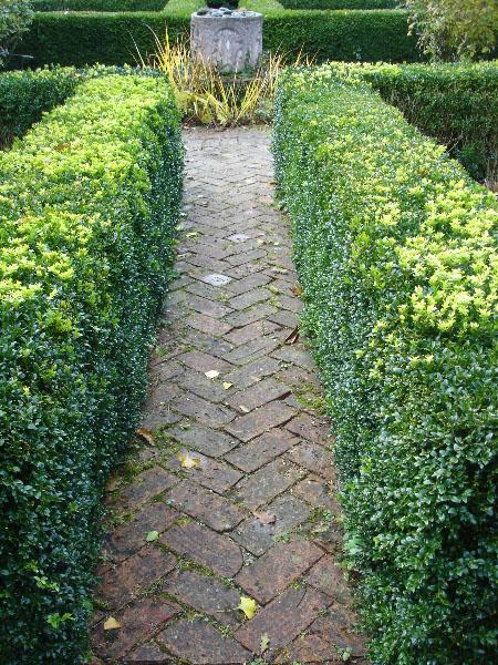 Brick herringbone path