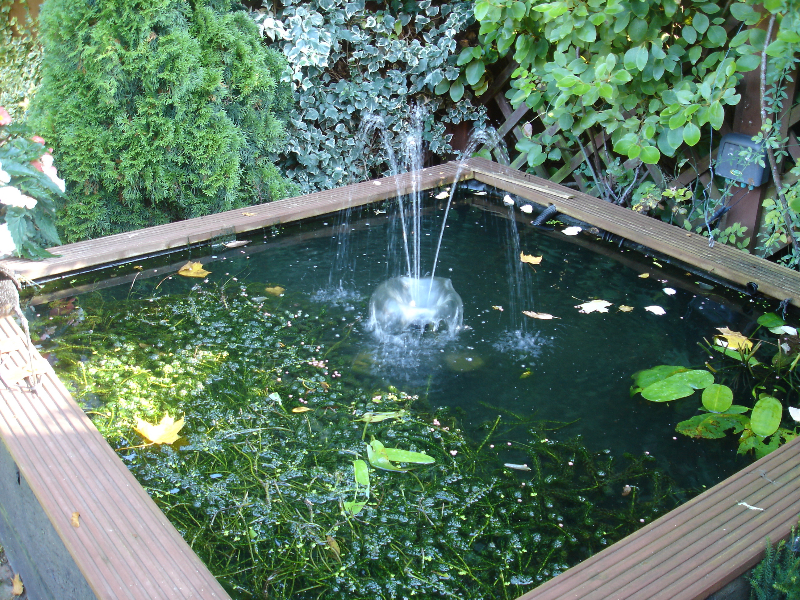 Water features and pond design and build by marshall james for Small water pond