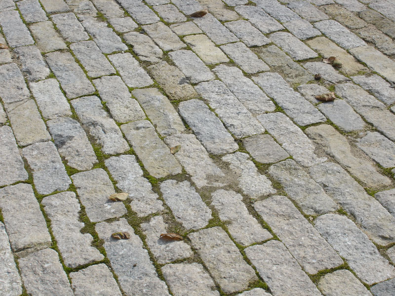 Purbeck stone cobble