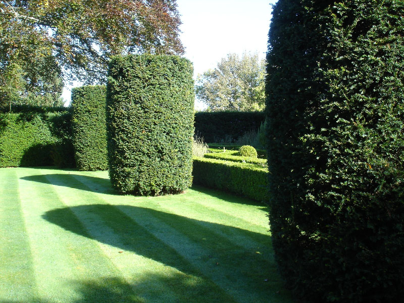 Yew towers